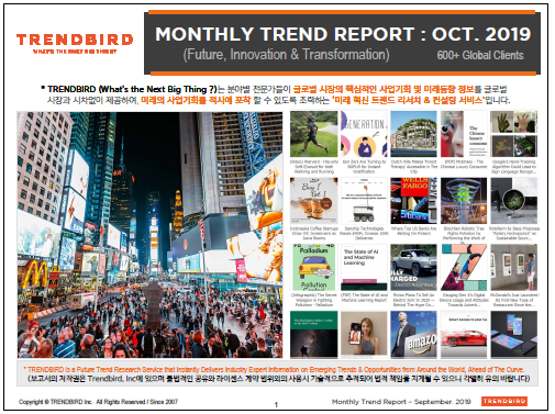 Monthly Trend Report