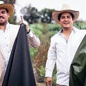 Cactus Leather Is the Newest Eco-Friendly Fabric - Desserto
