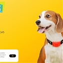 4G LTE Smart Pet Collar - RAWR