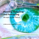 (PDF) KPMG - An Eye on The Future : Planning, Budgeting and Forecasting