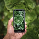 (Video) Seek App Lets Users Identify Plant and Animal Species in Real Time