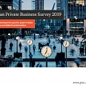 (PDF) PwC - European Private Business Survey 2019