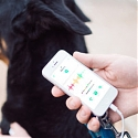 On-Demand Petcare Gains Traction