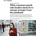 (PDF) Mckinsey - What Consumer-Goods Sales Leaders Must Do to Emerge Stronger from The Pandemic
