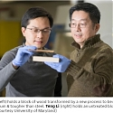 "A New Material Called ""Superwood"" Is Just As Strong As Steel"
