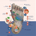 (Infographic) Foot Acupressure Points for Foot Massage