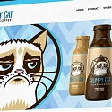 How Grumpy Cat Makes Her Millions