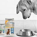 An Uptick in Clicks and Bricks for Pet Food : An Omnichannel Perspective