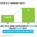Nielsen Predicts Legal Cannabis Sales In The U.S. To Reach $41 Billion By 2025