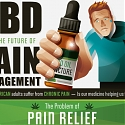 (Infographic) CBD And The Future Of Pain Management