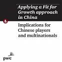 (PDF) PwC - Applying a Fit for Growth Approach in China