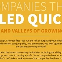 (Infographic) Companies That Scaled Quickly