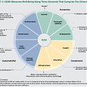 (PDF) BCG - Why Well-Being Should Drive Growth Strategies