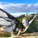 MetaFly RC Unique Flying Biomimetic Creature