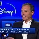Bob Iger Takes the Gloves Off for Disney's Streaming Debut