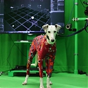 (Paper) Motion Capture Tech Digitizes Dogs, with No Suit and a Single Camera