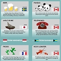 (Infographic) The Most Bizarre Exports From Around The World