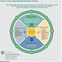 (PDF) BCG - The Agile Marketing Organization