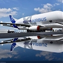 Airbus 'BelugaXL' Massive New Airplane Whale Go Where No Marine Mammal Has Gone Before
