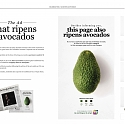 Avoca-Don't Dispose This Brilliant Print Ad That Ripens The Fruit For You