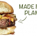 Plant-Based Meat Alternatives Make Significant Advancements