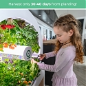 OGarden Smart : Grow An Indoor Garden of 90 Fruits & Veggies