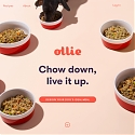 Ollie Raises $4.4M to Become The Sprig of Dog Food