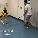 (Video) Forget Boston Dynamics. This Robot Taught Itself to Walk