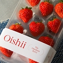 Perfecting The Indoor Strawberry: Vertical Farmer Oishii Lands $50M Series A
