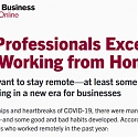 (Infographic) HBS -  Most Professionals Have Excelled While Working from Home
