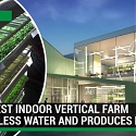(Video) World's Largest Indoor Vertical Farm Uses 95% Less Water and Produces More Food